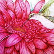 Bird In Bloom Art Print