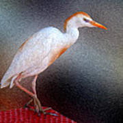 Bird In Faux Oil Art Print