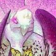 Bird Kind Of Art Print
