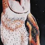 Bird N.7 Art Print