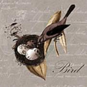 Bird Nest - 02v23c2b Art Print