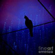 Bird On The Wire ... Art Print