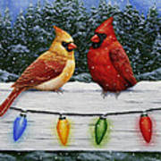 Bird Painting - Christmas Cardinals Print by Crista Forest