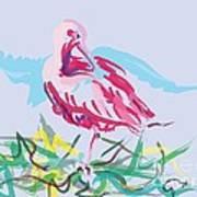 Bird Red Ibis Art Print