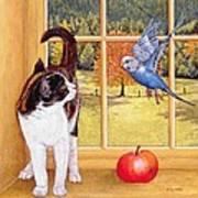 Bird Watching Art Print by Ditz