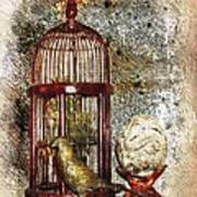 Birdcage Brass Bird And Carved Stone  Art Print