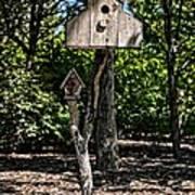 Birdhouses In The Trees Art Print