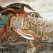 Birds Landing Art Print