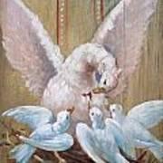 Birds Of Toledo Street Art Art Print