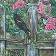 Birds On A Fence Art Print