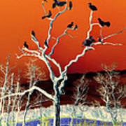 Birds On Tree Art Print