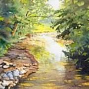 Bird's Trail Creek Art Print