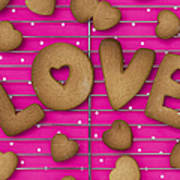 Biscuit Love Art Print by Tim Gainey