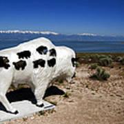 Bison Sculpture Great Salt Lake Utah Art Print