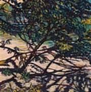 Bisset Park Original Art Print