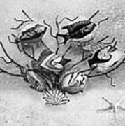 Black And White Fish 1  Art Print