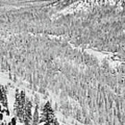 Black And White Lake Tahoe California Covered In Snow During The Winter Art Print