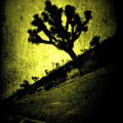 Black And Yellow Joshua Tree Poster Art Print