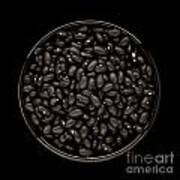 Black Beans In Bowl Art Print