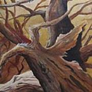 Black Cap Chickadee Art Print