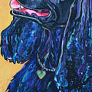 Black Cocker Spaniel Print by Patti Schermerhorn