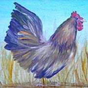 Black Copper Maran Rooster Art Print