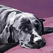 Black Labrador Beauty Sleep Art Print