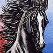 Black Stallion Art Print