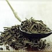 Black Tea Leaves Art Print
