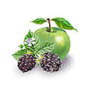 Blackberries And Green Apple Art Print