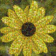 Blackeyed Suzy Mosaic Art Print