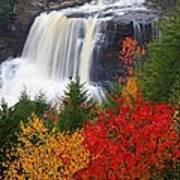 Blackwater Falls In Autumn Art Print by Jetson Nguyen