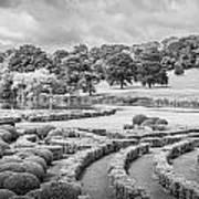 Bleak Topiary  Art Print