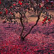 Bleeding Tree Art Print