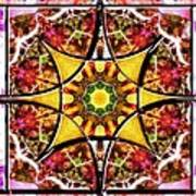 Blissful Ascension Art Print