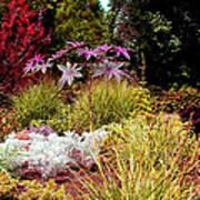 Blithewold Gardens Bristol Rhode Island Art Print
