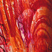 Blossom 1 Of 3 Art Print