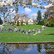 Blossom-framed House Art Print