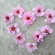 Blossoming Love Art Print