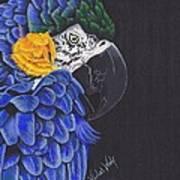 Blu And Gold Macaw Art Print