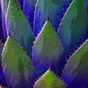 Blue Agave Art Print