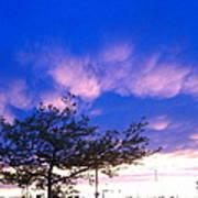 Blue And Purple Skies At Sunset Art Print