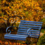 Blue Bench - Autumn - Deer Isle - Maine Art Print