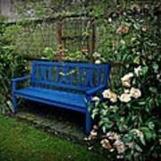Blue Bench With Roses Art Print