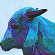 Blue Brahma Art Print