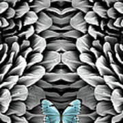 Blue Butterfly And Antenna Art Print