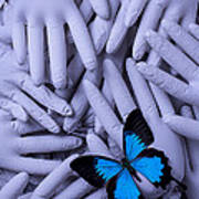 Blue Butterfly With Gary Hands Art Print by Garry Gay