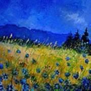 Blue Conflowers 454150 Art Print