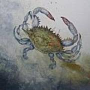 Blue Crab Print Art Print