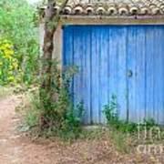 Blue Doors And Yellow Flowers Art Print